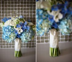blue and white hydrangeas
