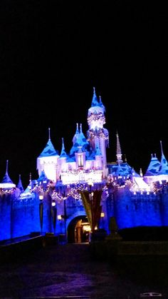 Read all about the awesomeness that goes on at #Disneyland during the #Holidays #DisneylandHolidayMagic Gorgeous Castle