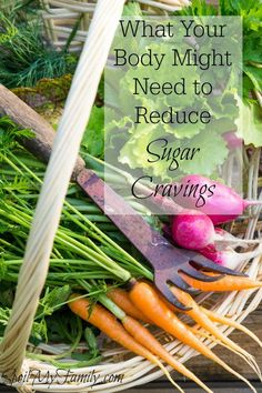 Do essential nutrients have anything to do with helping you reduce sugar cravings? You bet! Put this information in your arsenal to reduce sugar cravings.