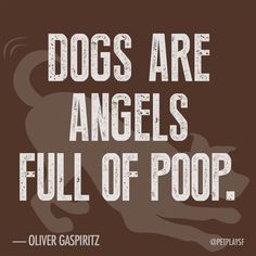 """Dogs are angels full of poop."""