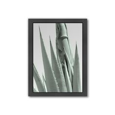 Americanflat ''Agave Abstract 6'' Framed Wall Art, Multicolor