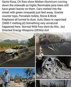 Direct Energy Weapons - DEWs and the trees are still green Scary Stories, Say What, Question Everything, Illuminati, Weapons, Conspiracy Theories, Politics, Thoughts, Weird Facts
