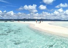 A sandbank island at Raja Ampat West Papua. One of the local attractions especially for scuba divers during their surface interval. The locals call this place 'Pasir Timbul' which appears during the low tides. West Papua, Instagram Travel, Local Attractions, The Locals, Diving, Surface, Island, Beach, Places