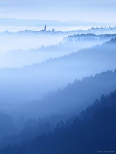 Layered World - Before sunrise in bavarian forest, Germany