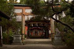 The Kohata shrine in Gokasho Furukawa, Uji-Kyoto! Not so far from Manpuku-ji temple. It was built in the Muromachi period in the Sangensha Nagare style.
