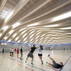 Seven Projects Honored with Inaugural Active Design Award,Gammel Hellerup High School Gymnasium and Multipurpose Hall / BIG © Jens Lindhe Light Architecture, Architecture Design, Wooden Architecture, Architecture Background, Architecture Wallpaper, School Architecture, Wolves Of Wall Street, Multipurpose Hall, Big Architects