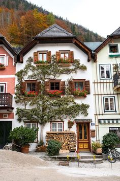 Autumn in Hallstatt, Austria Christmas in Austria // Via Stacie Flinner Places Around The World, Oh The Places You'll Go, Places To Travel, Around The Worlds, Wonderful Places, Beautiful Places, Europe Centrale, Fairytale House, Austria Travel