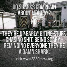 #MONDAYMOTIVATION  Be a damn shark today.  Bite Monday in its own ass.  #trainharddowork ________________________________________  Want to be featured in a repost? Show us how you train hard and do work   Use #555fitness in your post.  You can learn more about us and our charity by visiting WWW.555FITNESS.ORG  #fire #fitness #firefighter #firefighterfitness #firehouse #buildingastrongerbrotherhood #workout #ems #engine #truckie #firetruck #pastparallel #damstrong #charity #nonprofit…
