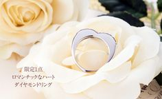 http://item.rakuten.co.jp/barbir/r1302/
