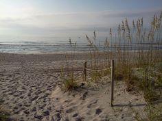 North Carolina coast line