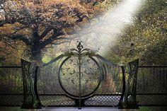 custom-wrought-iron-gates-Aprodite | Flickr - Photo Sharing!