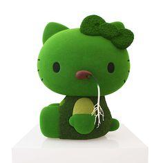 Hello Moss Kitty