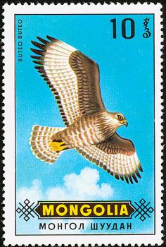 Common Buzzard stamps - mainly images - gallery format