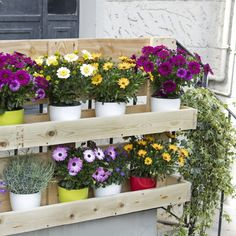 Pallet Garden Furniture, Pallets Garden, House Plants Decor, Plant Decor, Garden Beds, Home And Garden, Easy Fence, Wooden Pallet Projects, Herbs Indoors
