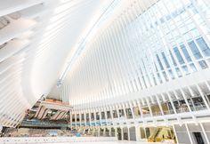 Dos infraestructuras ferroviarias diseñadas por Santiago Calatrava destacan como iconos en sus respectivas ciudades.