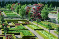 The Best Ecological Gardens ~ Life Tips And More !
