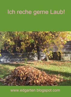 Typische Herbstarbeit: die farbigen Blätter zusammenrechen. #edgarten #gartenblog #herbst Vineyard, Outdoor, Fall Leaves, Natural Garden, Mushrooms, Outdoors, Vine Yard, Vineyard Vines, Outdoor Living