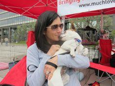 Volunteer Nikki snuggles with Noodle