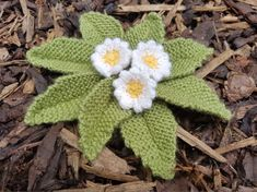 Handmade Knitted Primrose Plant Completed Fitting in Knitting Children Quick Cra. Handmade Knitted Primrose Plant Completed Fitting in Knitting Children Quick Craft Ideas Knitted Poppy Free Pattern, Knitted Flowers Free, Unicorn Knitting Pattern, Knitted Poppies, Knitted Doll Patterns, Knitted Dolls, Knitting Patterns Free, Crochet Flowers, Free Knitting