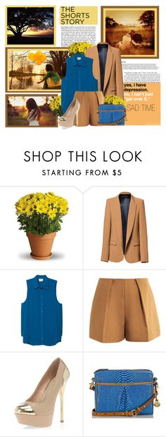 """""""Sad"""" by taraditha ❤ liked on Polyvore featuring Zara, Parker, Carven, Dorothy Perkins and Brahmin"""