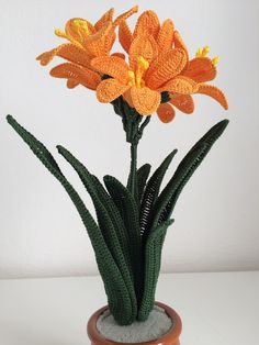 Il Blog di Sam: How to crochet a Clivia