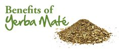 Yerba Mate Tea Benefits - There are also other Yerba mate products on the market. Click on the image to find out more.