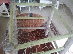 Wife of the infamous RedneckRosarian, creates two beautiful planter chairs that created a warm welcome to your porch or garden entrance.