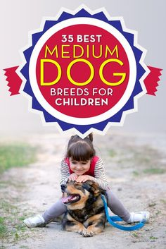 35 Medium and Small Dogs Good With Kids Best Medium Dog Breeds and Small Dogs for Kids. Picking a do. Best Medium Dog Breeds, Best Dog Breeds, Puppy Breeds, Medium Dogs, Small Dog Breeds, Medium Sized Dogs Breeds, Small Breed, Small Dogs For Kids, Best Small Dogs