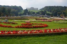 Wien Schloss Schönbrunn - Blick auf die Gloriette im Garten