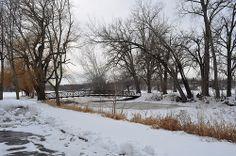 Snow Bridge Winter Road, Winter Wonderland, Countryside, Places To Go, Beautiful Places, Scenery, Snow, Landscape, Park