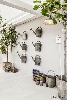 arrosoirs mur
