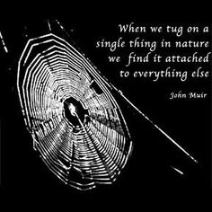 John Muir Quote |Constanza, Flickr - Photo Sharing!
