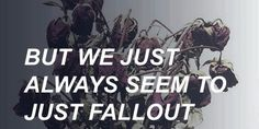 Fallout // Catfish and the Bottlemen