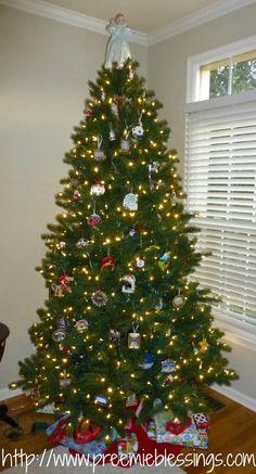 Preemie Blessings: A Preemie's Twelve Days of Christmas