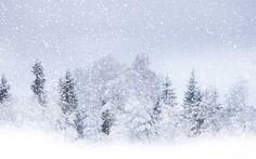free desktop backgrounds for snow storm, 1920 x 1200 (746 kB)