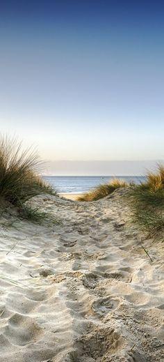 Ocean Scenes, Beach Scenes, Beach Pictures, Nature Pictures, Plage Art Mural, Beach Landscape, Ocean Beach, Belle Photo, Amazing Nature