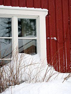 Laponie | Lapland #04