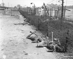Ohrdruf, Germany, Burned prisoners' dead bodies by the camp fence, after the liberation, 1945.