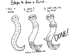 Haha! Steps to draw a ferret