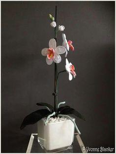 13 Beste Afbeeldingen Van Orchidee Crochet Flowers Yarns En