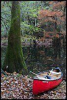 Canoeing in California.