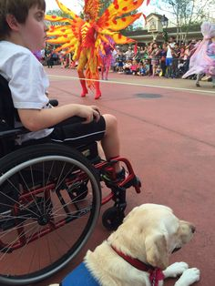 Anthony's service dog got a lot of attention at THE MAGIC KINGDOM. One little girl bought a MINNIE MOUSE dog toy for Oprah while in a gift shop with us.