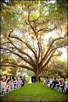Meredith & Blake's Wedding Day - Eden Gardens, FL