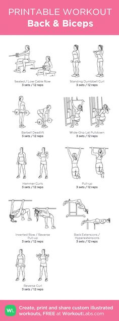 This arm workout can be done at home or in the gym with dumbbells, toning and strengthening your biceps and triceps. This arm workout can be done at home or in the gym with dumbbells, toning and strengthening your biceps and triceps. Back Workout Men, Back And Bicep Workout, Back And Shoulder Workout, Back And Biceps, Biceps Workout, Bicep Workout Women, Crossfit Arm Workout, Bi Workout, 6 Pack Abs