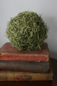 Decorative Moss Ball by MowenCreations on Etsy