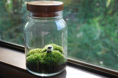 Ireland landscape in a jar....complete with a little sheep! :)