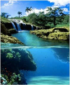 El Nicho Falls - Cuba, so beautiful, definitely would love to check that out! :)