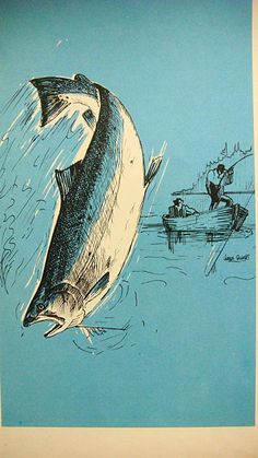 Love the color in these vintage fish illustrations. Great to frame.