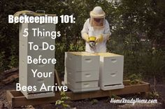 Beekeeping 101: 5 Things to Do Before Your Bees Arrive