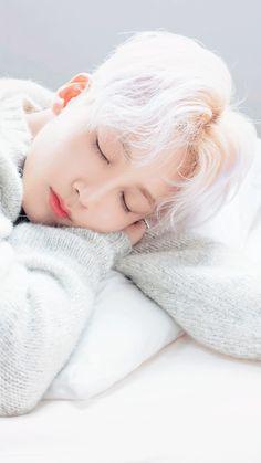 he definitely looks like an angel when sleeping 💖 Woozi, Wonwoo, The8, Seungkwan, Seventeen Jun, Jeonghan Seventeen, Seventeen Scoups, Fandom, Seventeen Instagram